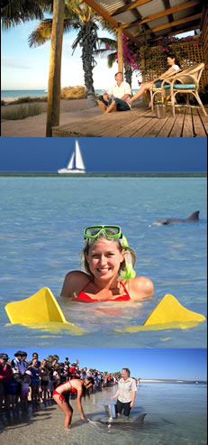 Monkey Mia Dolphin Resort - ACT Tourism