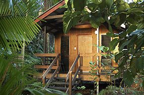 Cape Trib Beach House - ACT Tourism