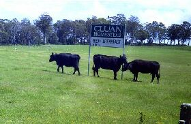 Cluan Homestead - The Managers Residence - ACT Tourism