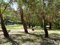 Woods Reserve - ACT Tourism