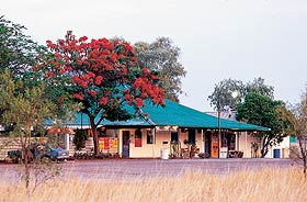 Wauchope Hotel and Roadhouse - ACT Tourism
