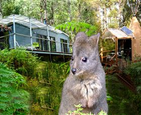 Huon Bush Retreats - ACT Tourism