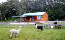 Moorallie Cottage Farm Stay - ACT Tourism