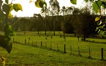 Stone Cottage Mittagong - ACT Tourism