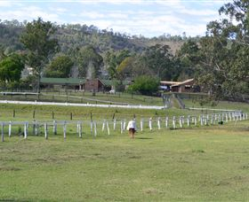 Kellarni Downs Farmstay-Scenic Rim - ACT Tourism