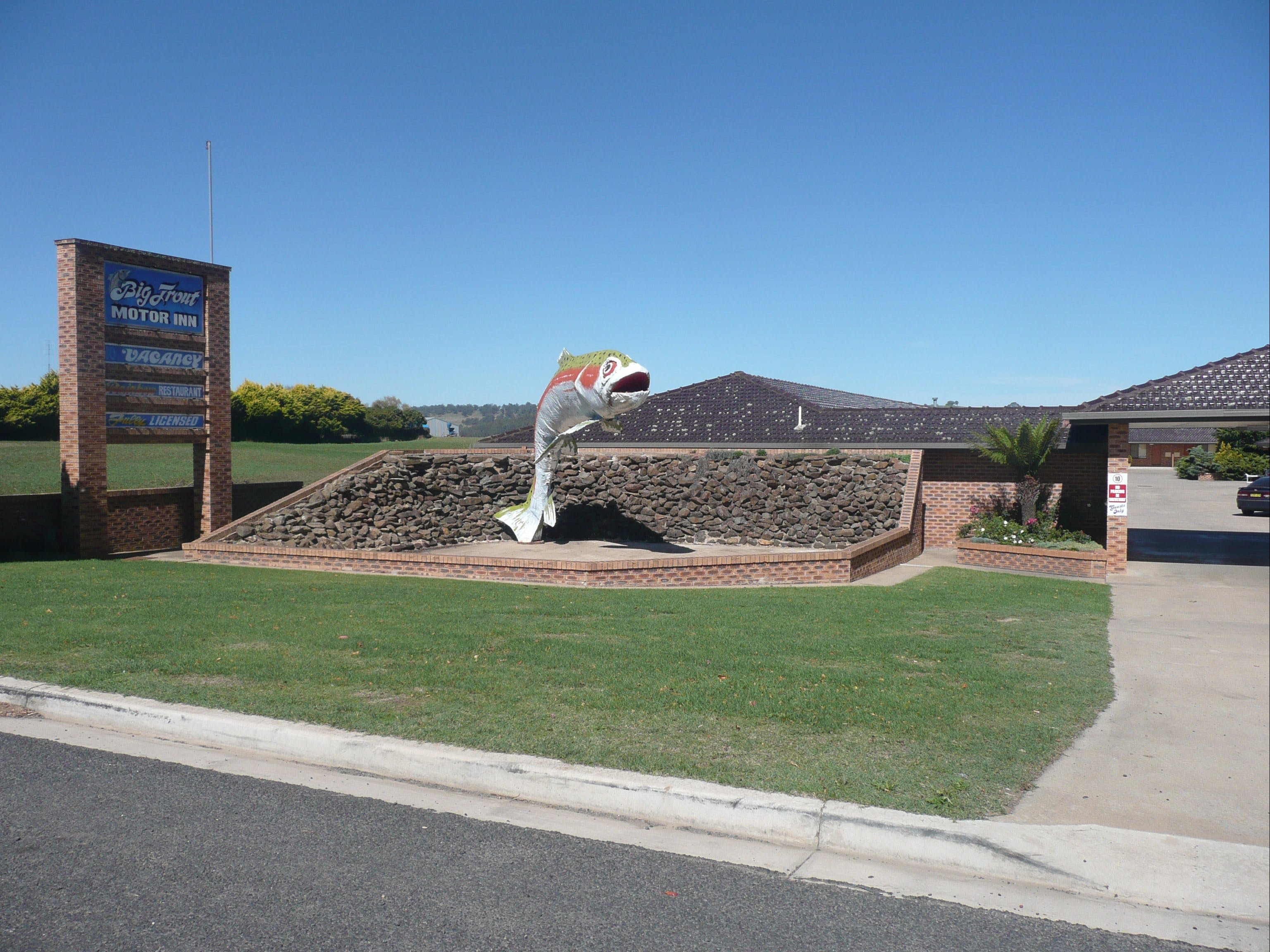 Big Trout Motor Inn - ACT Tourism
