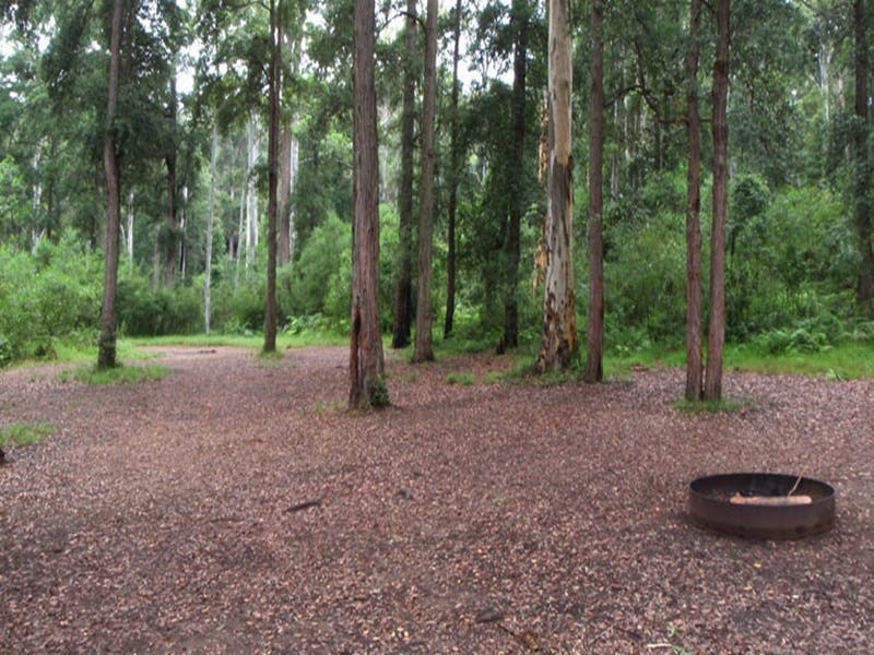 Murphys Glen campground - ACT Tourism
