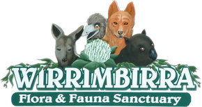 Wirrimbirra Sanctuary - ACT Tourism