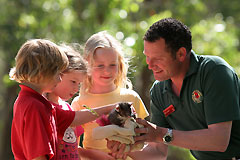 Cleland Wildlife Park - ACT Tourism