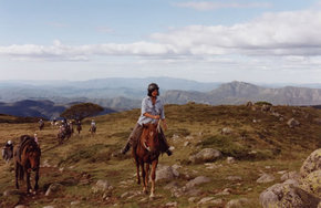 High Country Horses - ACT Tourism