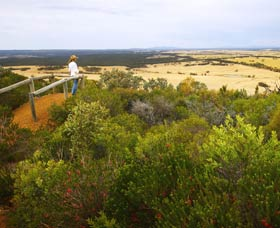Archer Drive Scenic Drive and Lookout - ACT Tourism