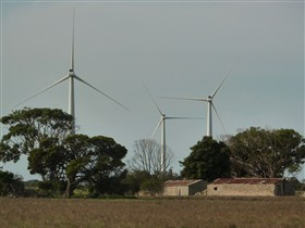 Wattle Point Wind Farm - ACT Tourism