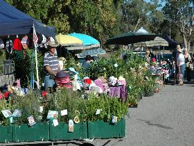 Meadows Monthly Market - ACT Tourism