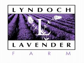 Lyndoch Lavender Farm and Cafe - ACT Tourism