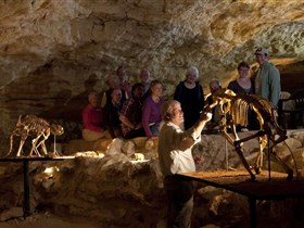Naracoorte Caves National Park - ACT Tourism