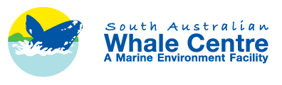 South Australian Whale Centre - ACT Tourism