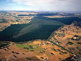 Mount Crawford Forest Reserve - ACT Tourism