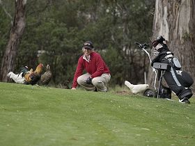 Tasmania Golf Club - The - ACT Tourism