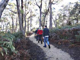 Bridport Walking Track - ACT Tourism