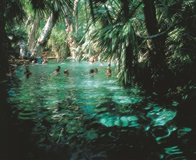 Mataranka Thermal Pool - ACT Tourism