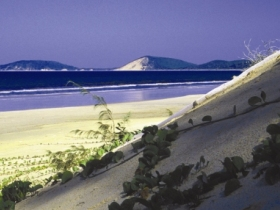 Cooloola Great Sandy National Park - ACT Tourism