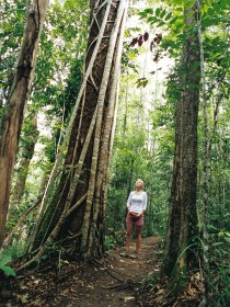 Wet Tropics - ACT Tourism