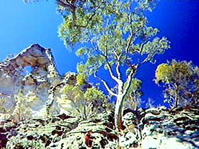 Mount Moffatt Section - Carnarvon National Park