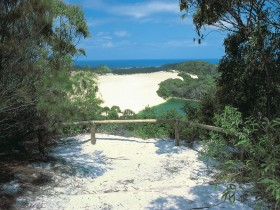 Lake Wabby Track - ACT Tourism