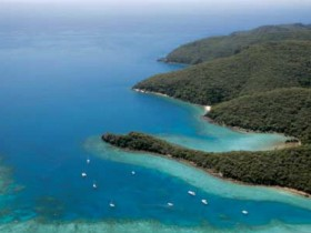 Butterfly Bay - Hook Island - ACT Tourism