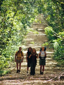 Wet Tropics Great Walk - ACT Tourism