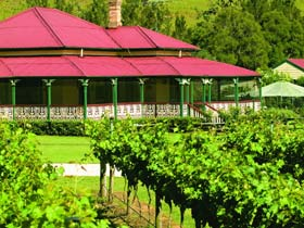 OReillys Canungra Valley Vineyards - ACT Tourism