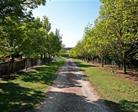 Waybourne Winery - ACT Tourism