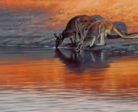 Steve Morvell Wildlife Art - ACT Tourism