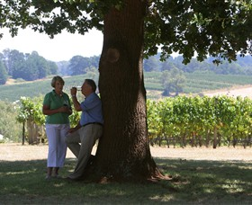 Five Oaks Vineyard - ACT Tourism