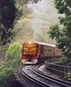 Cockatoo Run - Scenic Tour Train operated by 3801 Limited - ACT Tourism
