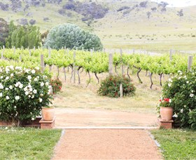 Brindabella Hills Winery - ACT Tourism