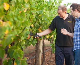 Fratin Brothers Vineyard - ACT Tourism