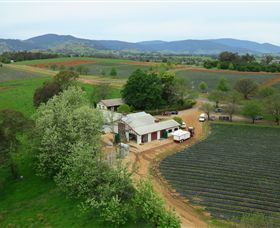 Schmidts Strawberry Winery - ACT Tourism