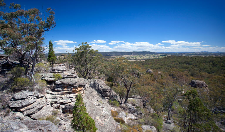 Munghorn Gap Nature Reserve - ACT Tourism