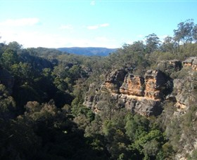 Ferntree Gully Reserve - ACT Tourism