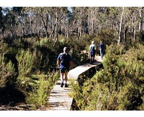Hume and Hovell Walking Track - Henry Angel Trackhead - ACT Tourism