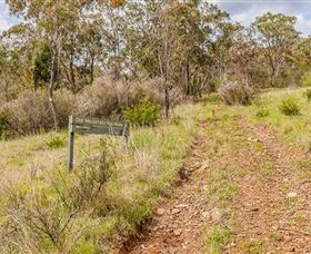Old Mountain Road Walking Track - ACT Tourism