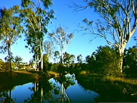 Dingo Creek Park - ACT Tourism
