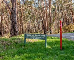 Lobs Hole Ravine 4WD Trail - ACT Tourism
