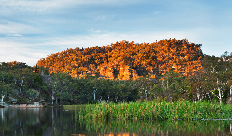 Wollemi National Park - ACT Tourism
