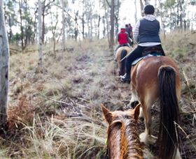 Burnelee Excursions On Horseback - ACT Tourism
