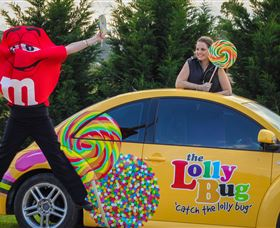 The Lolly Bug - ACT Tourism