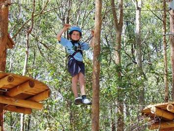 TreeTops Newcastle - ACT Tourism