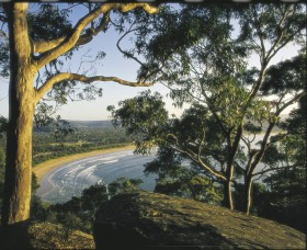 Ocean Beach Umina - ACT Tourism
