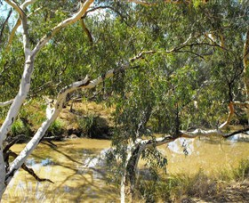 Quilberry Creek Fishing - ACT Tourism